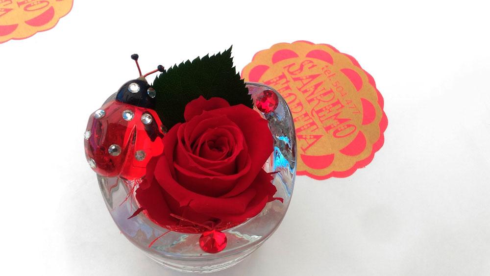 Rose Stabilizzate Confezionate